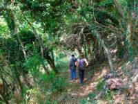Montagna pistoiese trekking